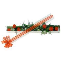 Aydın çiçek siparişi sitesi  6 adet kirmizi gül kutu içerisinde