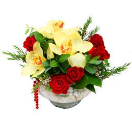 Aydın çiçek gönderme  1 adet orkide 5 adet gül cam yada mikada