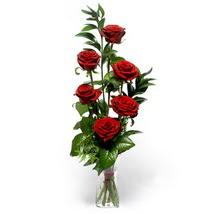 Aydın çiçek siparişi sitesi  cam yada mika vazo içerisinde 6 adet kirmizi gül