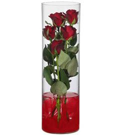 cam içerisinde 7 adet kirmizi gül  Aydın çiçekçiler