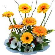 camda gerbera ve mis kokulu kir çiçekleri  Aydın çiçekçi telefonları