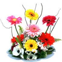 Aydın hediye çiçek yolla  camda gerbera ve mis kokulu kir çiçekleri