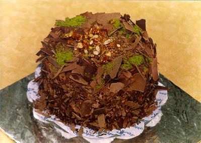 Çikolatali 4 ila 6 kisilik yas pasta  Aydın çiçek gönderme sitemiz güvenlidir