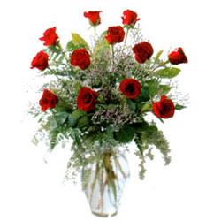 Vazo içerisinde 11 kirmizi gül  Aydın çiçek siparişi vermek