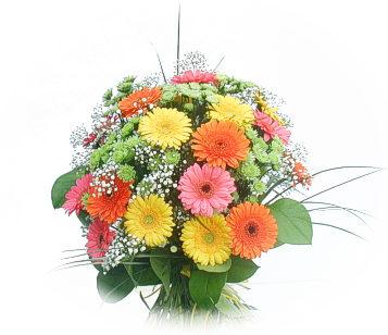 13 adet gerbera çiçegi buketi  Aydın online çiçek gönderme sipariş