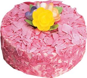 pasta siparisi 4 ile 6 kisilik framboazli yas pasta  Aydın çiçek yolla