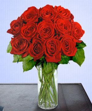 Anneme 12 adet cam içerisinde kirmizi gül  Aydın çiçek siparişi sitesi