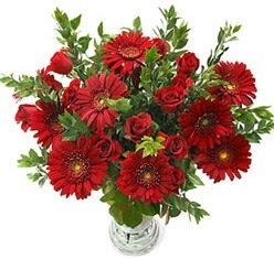 5 adet kirmizi gül 5 adet gerbera aranjmani  Aydın hediye çiçek yolla
