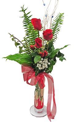 Çiçek gönderin cam vazoda 3 gül çiçekleri  Aydın çiçek siparişi sitesi