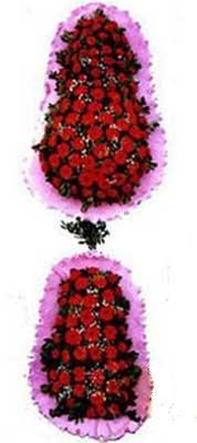 Aydın hediye çiçek yolla  dügün açilis çiçekleri  Aydın çiçek siparişi sitesi