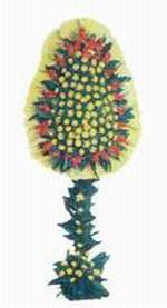 Aydın çiçek yolla  dügün açilis çiçekleri  Aydın online çiçek gönderme sipariş