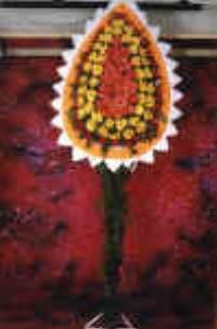 Aydın çiçek satışı  dügün açilis çiçekleri  Aydın çiçek , çiçekçi , çiçekçilik