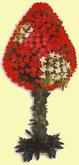 Aydın çiçek gönderme  dügün açilis çiçekleri  Aydın çiçek online çiçek siparişi