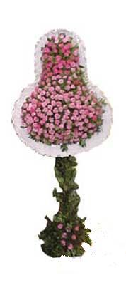 Aydın ucuz çiçek gönder  dügün açilis çiçekleri  Aydın internetten çiçek siparişi