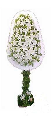 Aydın çiçek siparişi sitesi  nikah , dügün , açilis çiçek modeli  Aydın online çiçek gönderme sipariş