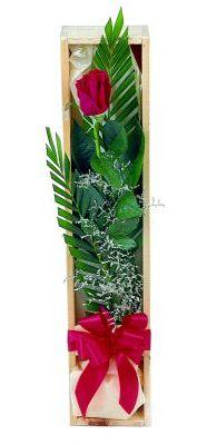 1 adet kutuda kirmizi gül  Aydın çiçek gönderme sitemiz güvenlidir