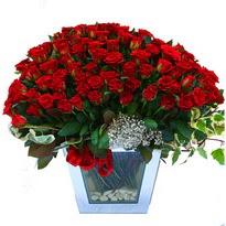 Aydın çiçekçiler   101 adet kirmizi gül aranjmani