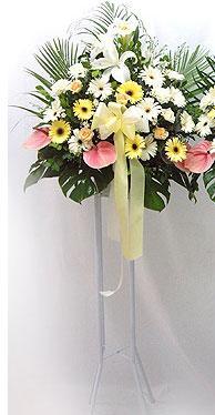 Aydın online çiçek gönderme sipariş   perförje çiçegi dügün çiçekleri