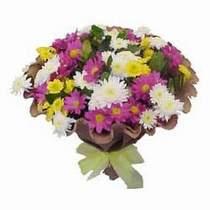 Aydın çiçekçi telefonları  Mevsim kir çiçegi demeti