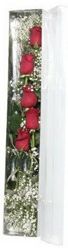 Aydın çiçek siparişi sitesi   5 adet gülden kutu güller