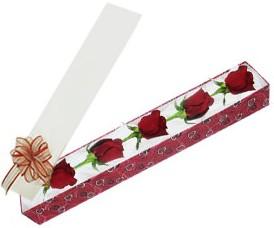 Aydın internetten çiçek satışı  kutu içerisinde 5 adet kirmizi gül