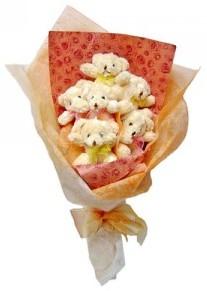 12 adet ayiciktan buket  Aydın çiçek siparişi sitesi
