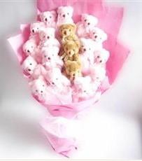 17 adet pelus ayicik buketi  Aydın İnternetten çiçek siparişi