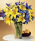 Aydın anneler günü çiçek yolla  Lilyum ve mevsim  çiçegi özel