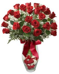 17 adet essiz kalitede kirmizi gül  Aydın çiçek mağazası , çiçekçi adresleri