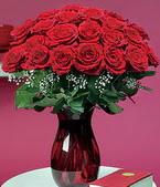 Aydın çiçek online çiçek siparişi  11 adet Vazoda Gül sevenler için ideal seçim