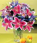 Aydın çiçek mağazası , çiçekçi adresleri  Sevgi bahçesi Özel  bir tercih