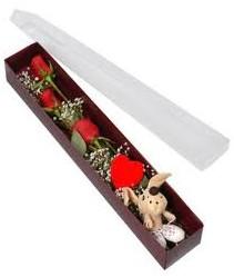 kutu içerisinde 3 adet gül ve oyuncak  Aydın cicekciler , cicek siparisi