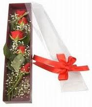kutu içinde 5 adet kirmizi gül  Aydın internetten çiçek siparişi