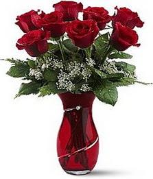 Vazo içinde 8 adet kirmizilar içinde güller  Aydın internetten çiçek siparişi