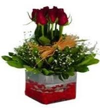 Aydın çiçek gönderme  7 adet mika yada cam vazoda gül tanzimi