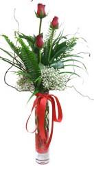Aydın çiçek siparişi sitesi  3 adet kirmizi gül vazo içerisinde