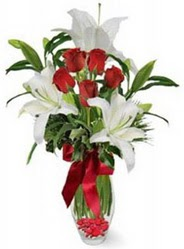 Aydın çiçek siparişi vermek  5 adet kirmizi gül ve 3 kandil kazablanka