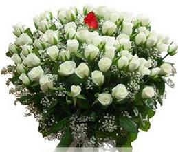 Aydın internetten çiçek satışı  100 adet beyaz 1 adet kirmizi gül buketi