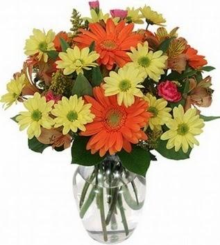 Aydın hediye sevgilime hediye çiçek  vazo içerisinde karışık mevsim çiçekleri
