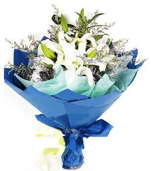 Aydın anneler günü çiçek yolla  4 adet dal kazablankadan görsel buket