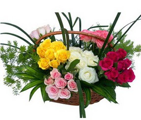 Aydın ucuz çiçek gönder  35 adet rengarenk güllerden sepet tanzimi