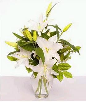 Aydın çiçek gönderme  2 dal cazablanca vazo çiçeği