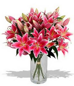 4 dal cazablanca görsel vazosu  Aydın çiçekçi mağazası