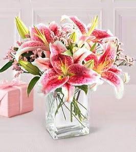 2 dal kazablanka görsel vazosu  Aydın çiçek siparişi sitesi