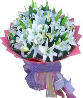 7 dal cazablanca görsel buketi  Aydın çiçekçi mağazası