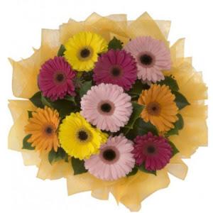 Aydın İnternetten çiçek siparişi  11 adet karışık gerbera çiçeği buketi