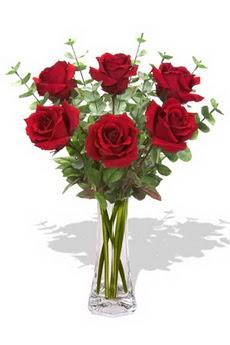 Aydın çiçekçi mağazası  6 kırmızı gül vazosu