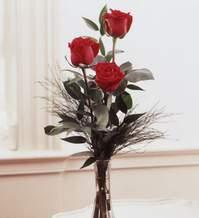 Aydın internetten çiçek satışı  Vazoda 3 adet güzel gül