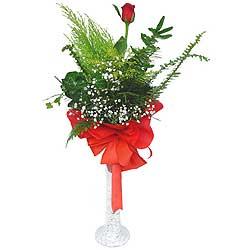 Aydın anneler günü çiçek yolla  Cam vazoda masum tek gül