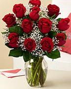 Sevgilime hediye 9 adet 1.ci kalite gül  Aydın anneler günü çiçek yolla